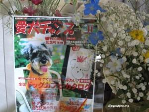 2001年愛犬チャンプ表紙のパセリ