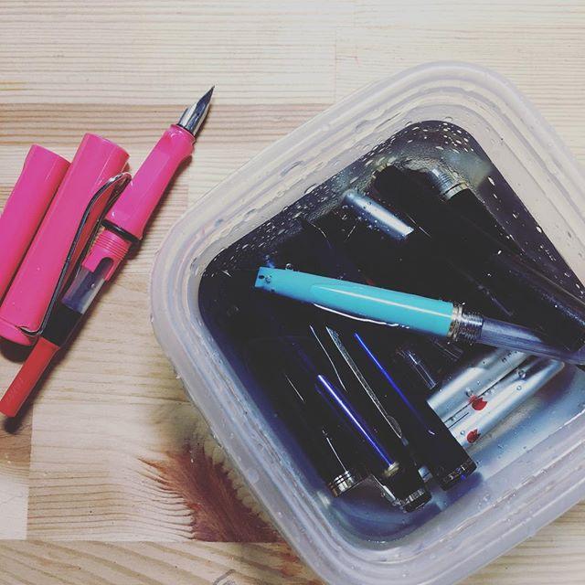 顔料インクの洗浄が終わったので他の子たちもクリーニング♪ ん?足りないな。