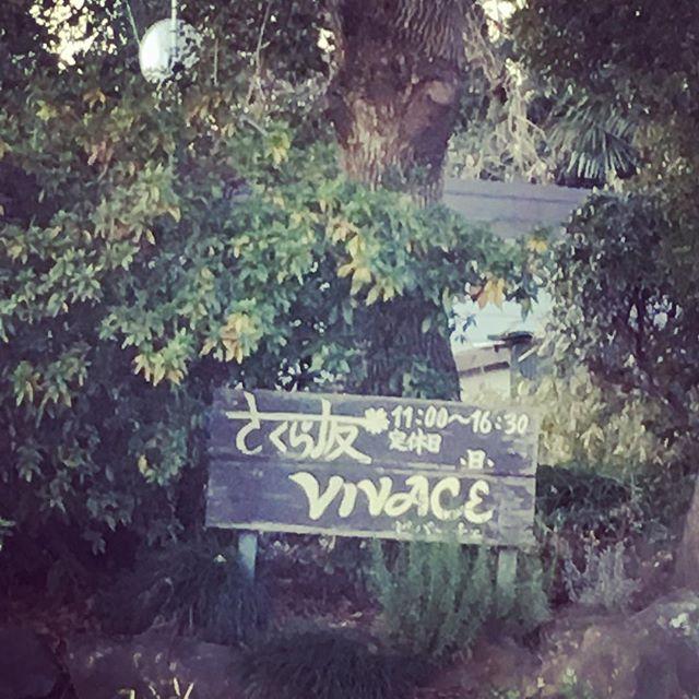 今日はさくら坂メルカート@守谷です。素敵な場所に楽しくて美味しいものがぎゅっ 暖かくしていらしてくださいね*(^o^)/*