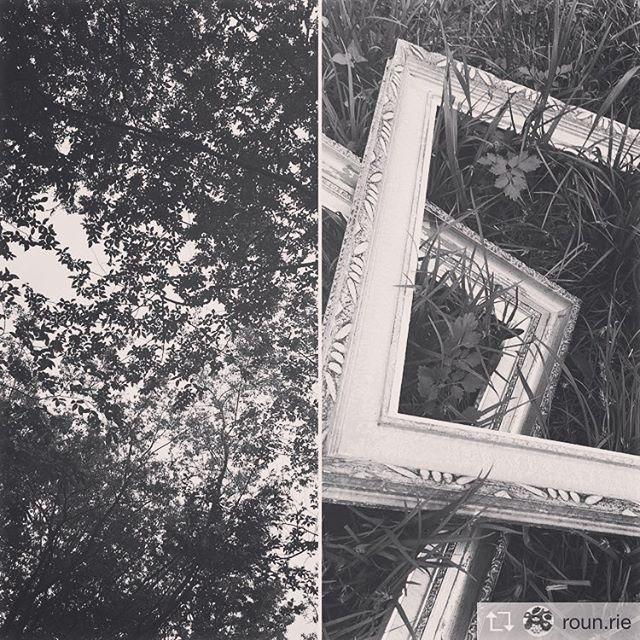 Repost from @roun.rie 森の朝、深呼吸。森からもご一緒した方からも新鮮な空気をいただきました。