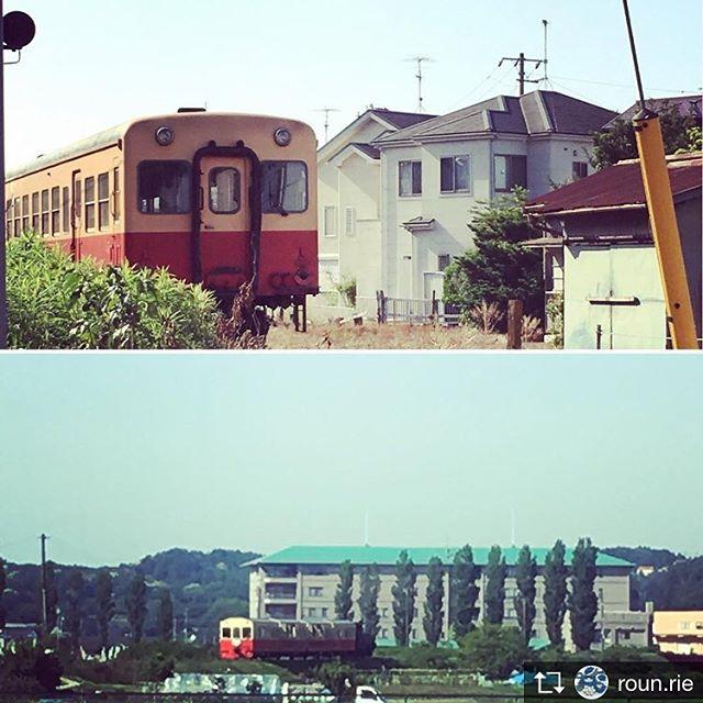 Repost from @roun.rie 昨日、伊丹陣屋2日目に向かう途中で。小湊鉄道ではトロッコ列車が走っていました♪