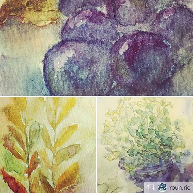 Repost from @roun.rie @TopRankRepost #TopRankRepost 秋の気配の小品朝晩の空気はすっかり秋熟し芳香を放つ実少し秋色化粧をはじめた木まぶしくない深みのある輝きがあちこちに