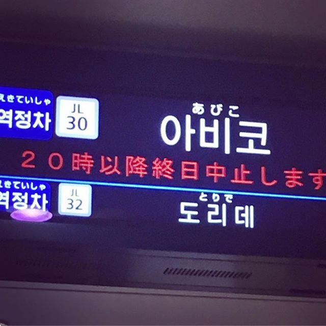 20時以降運転取りやめ(*_*)